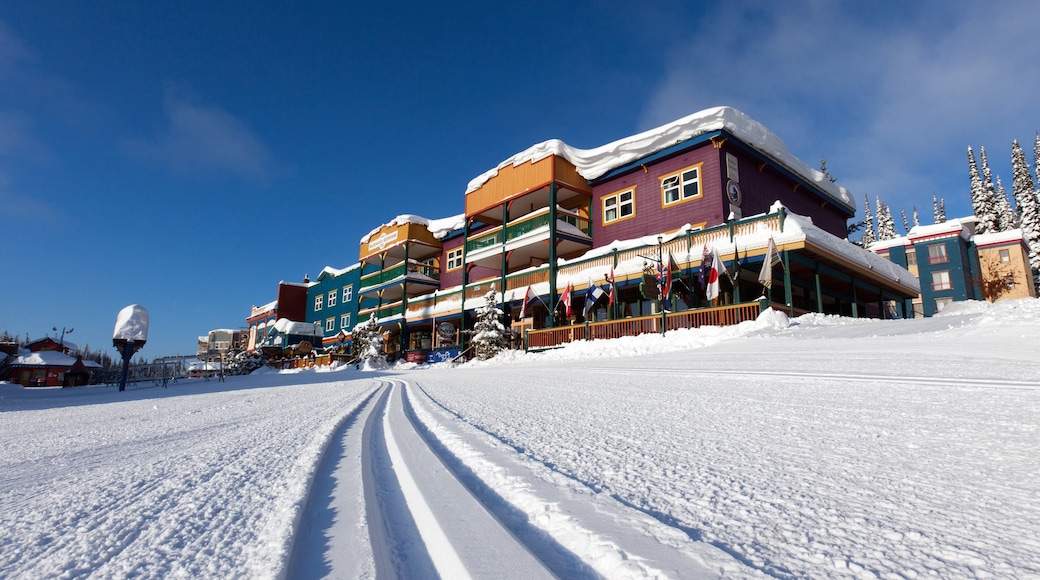 Silver Star Ski Resort showing a luxury hotel or resort as well as an individual male