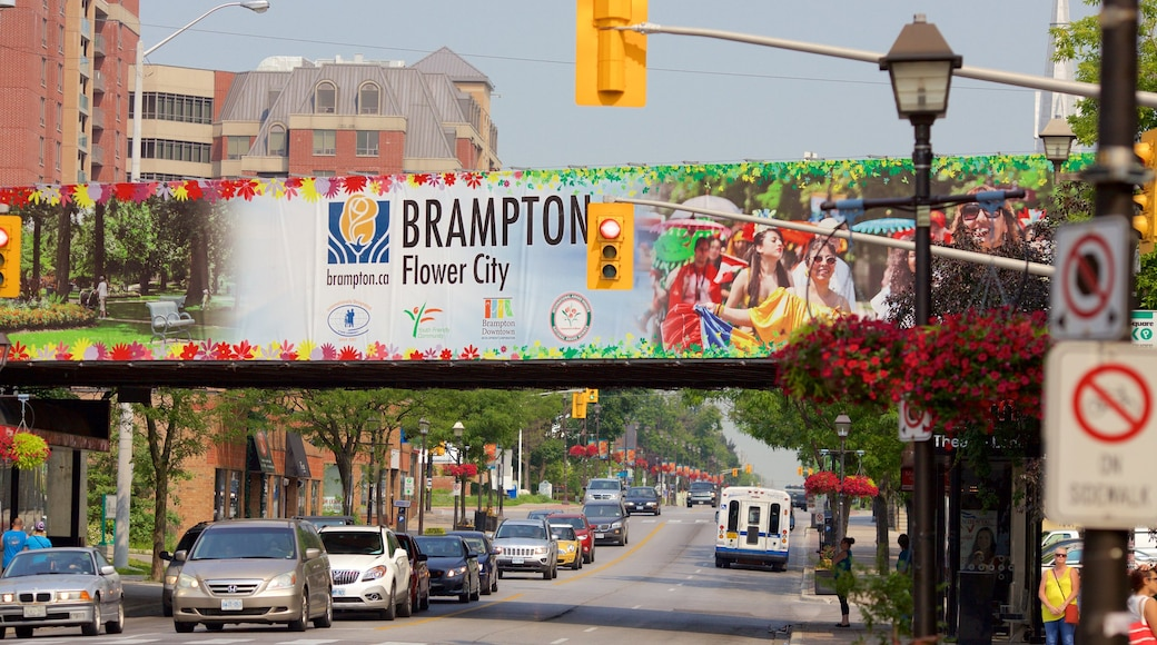 Brampton which includes a city, street scenes and signage