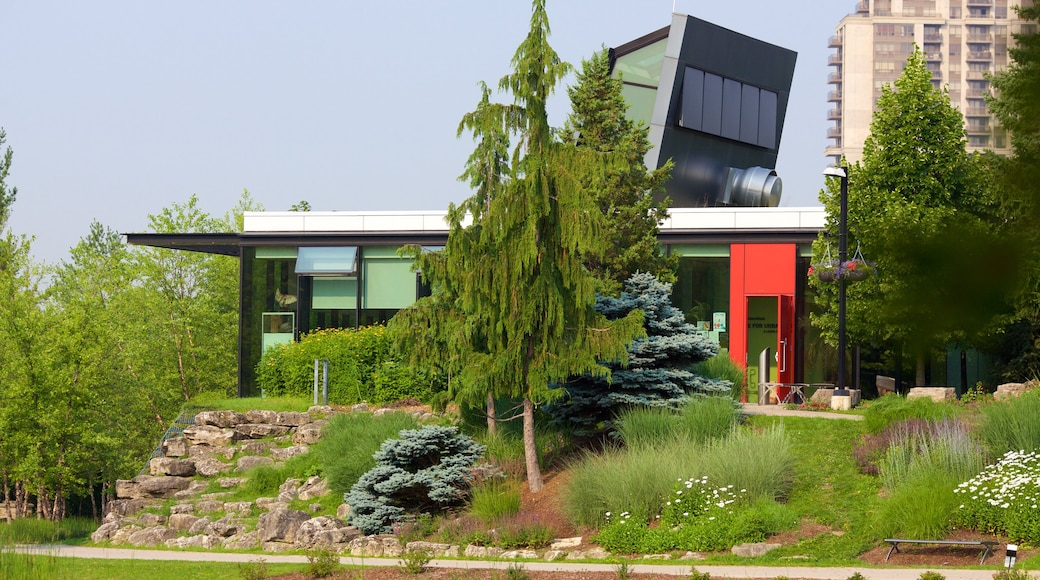Rexdale showing modern architecture