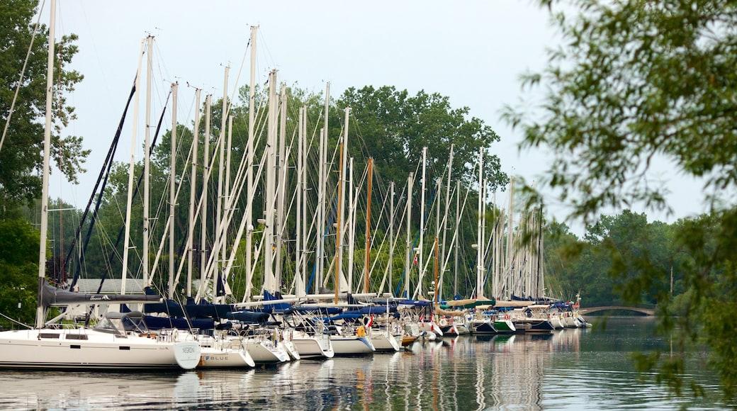Toronto Islands showing a marina, sailing and boating