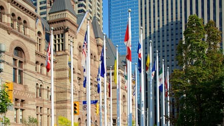 Downtown Toronto featuring a city, an administrative buidling and heritage architecture