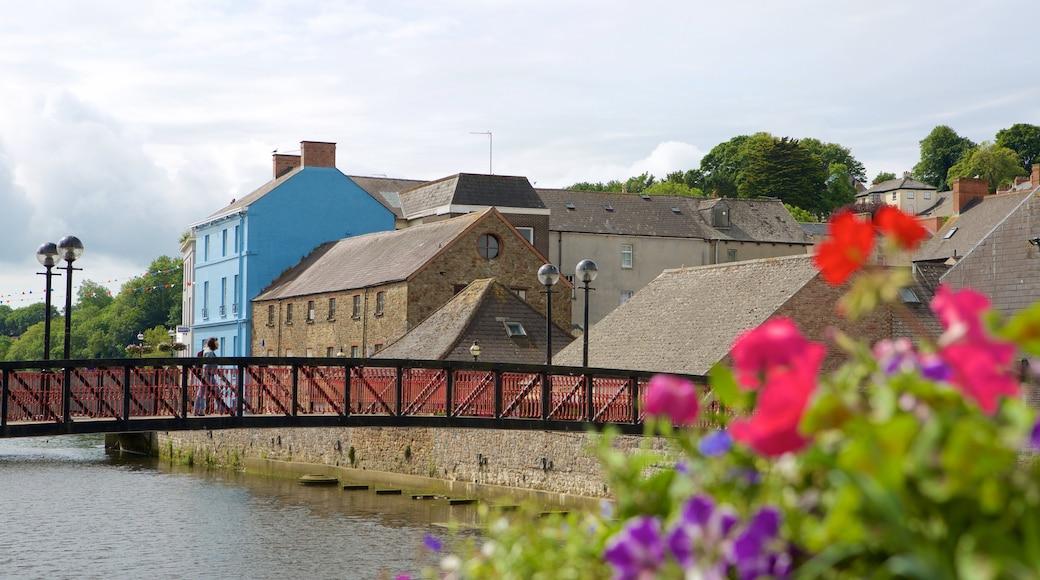 Haverfordwest ofreciendo un río o arroyo, un pueblo y un puente