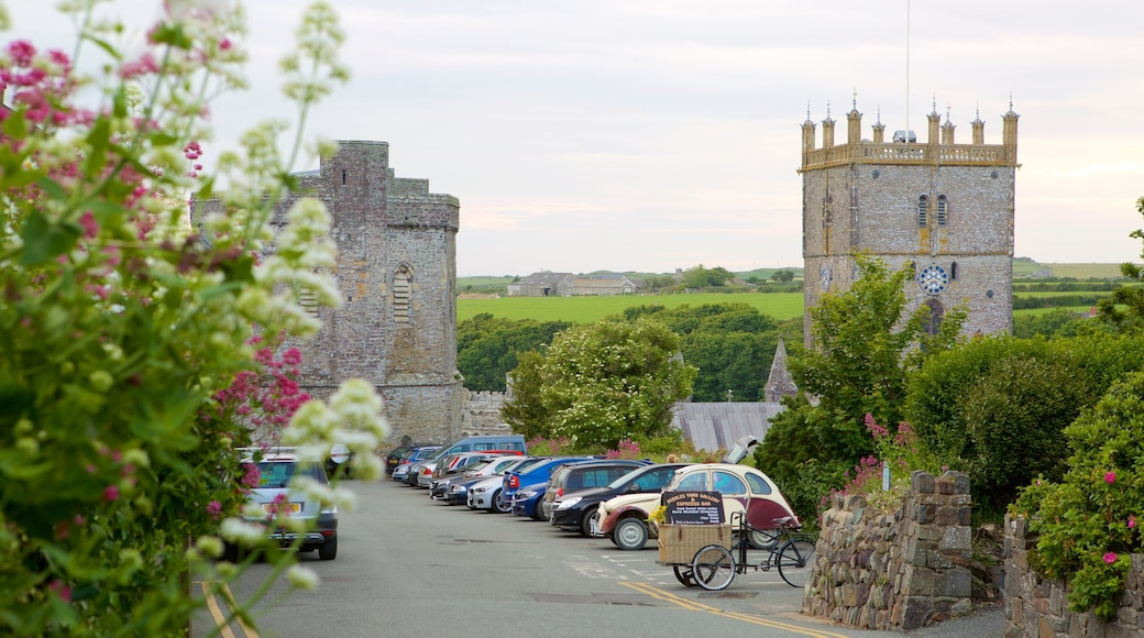 St Davids which includes street scenes and a small town or village