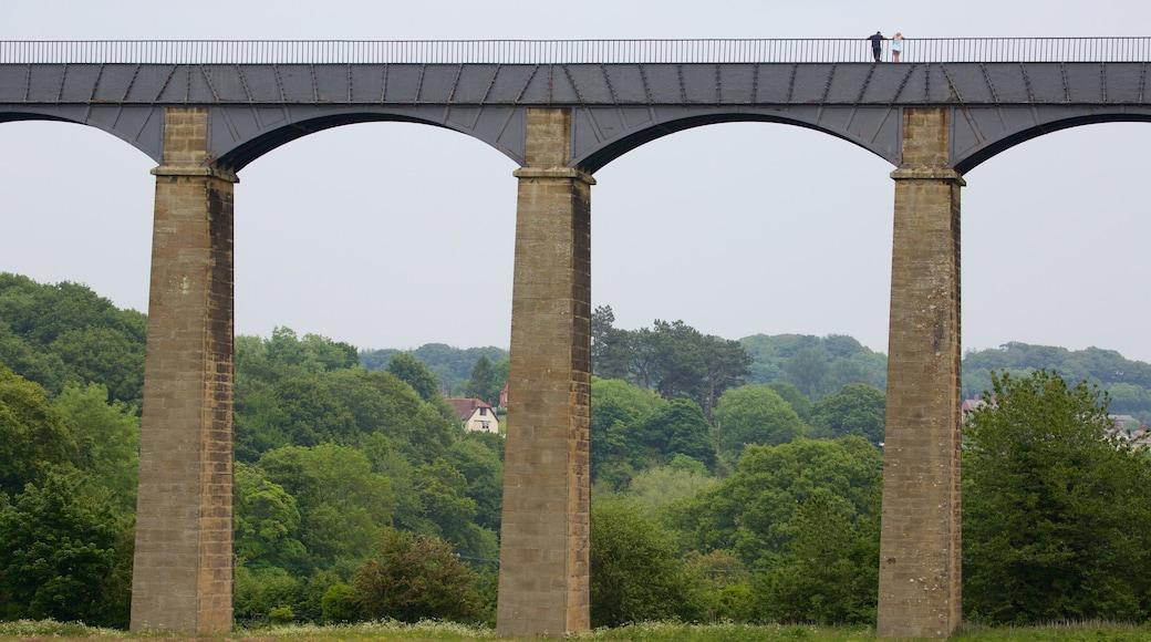 Pontcysyllte Aquaduct featuring a bridge