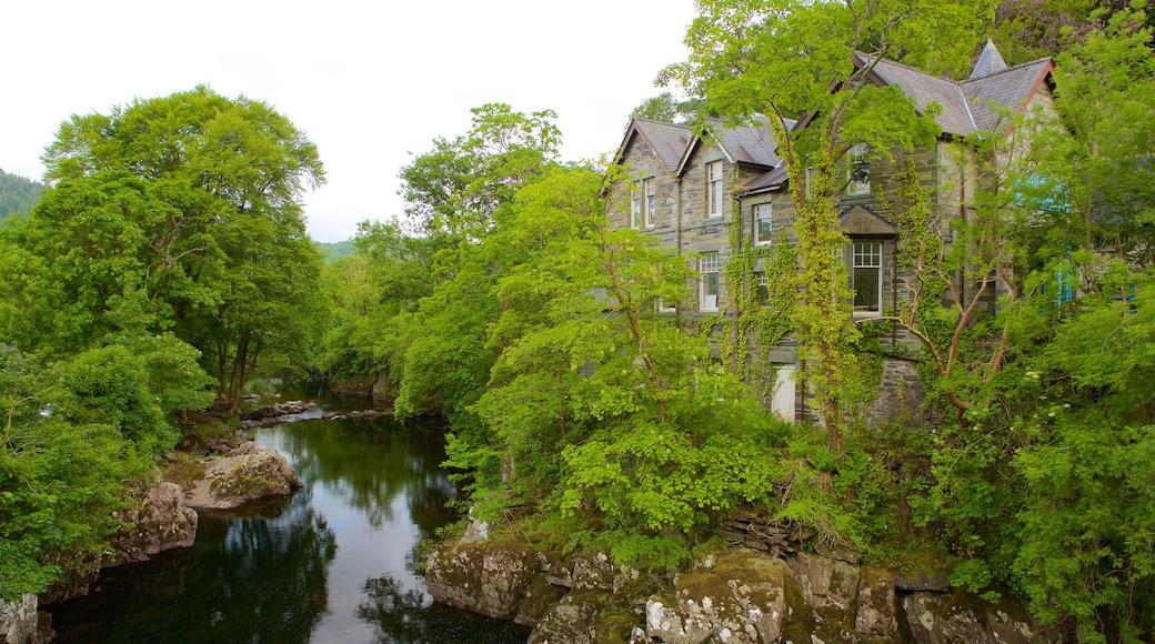 Betws-y-coed welches beinhaltet Fluss oder Bach, Wälder und Haus