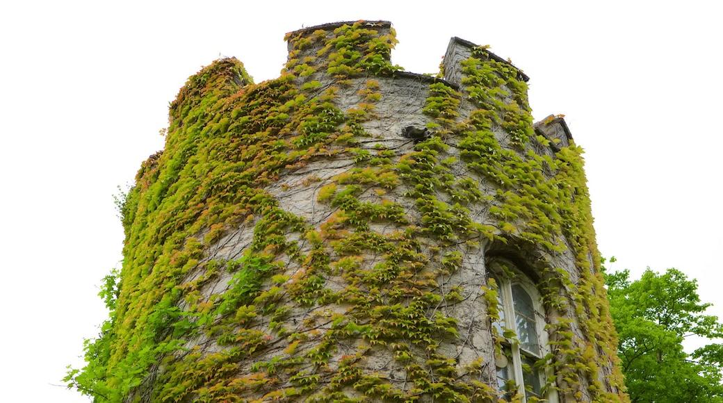 Bodelwyddan Castle mit einem Palast oder Schloss und Geschichtliches