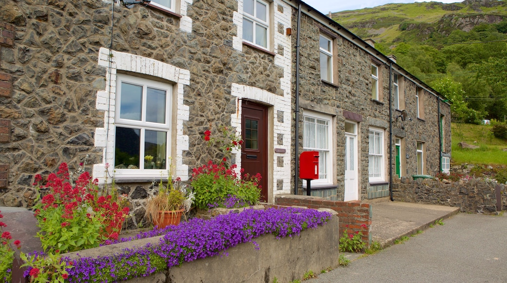 Betws Garmon featuring a house and street scenes