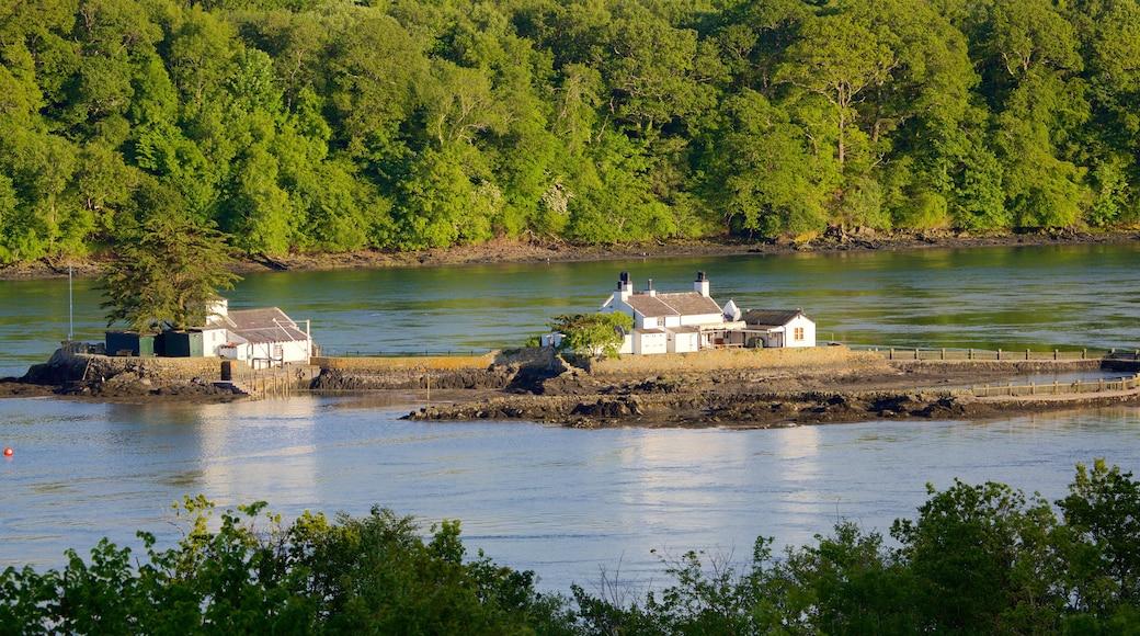 Menai Bridge montrant rivière ou ruisseau et forêts