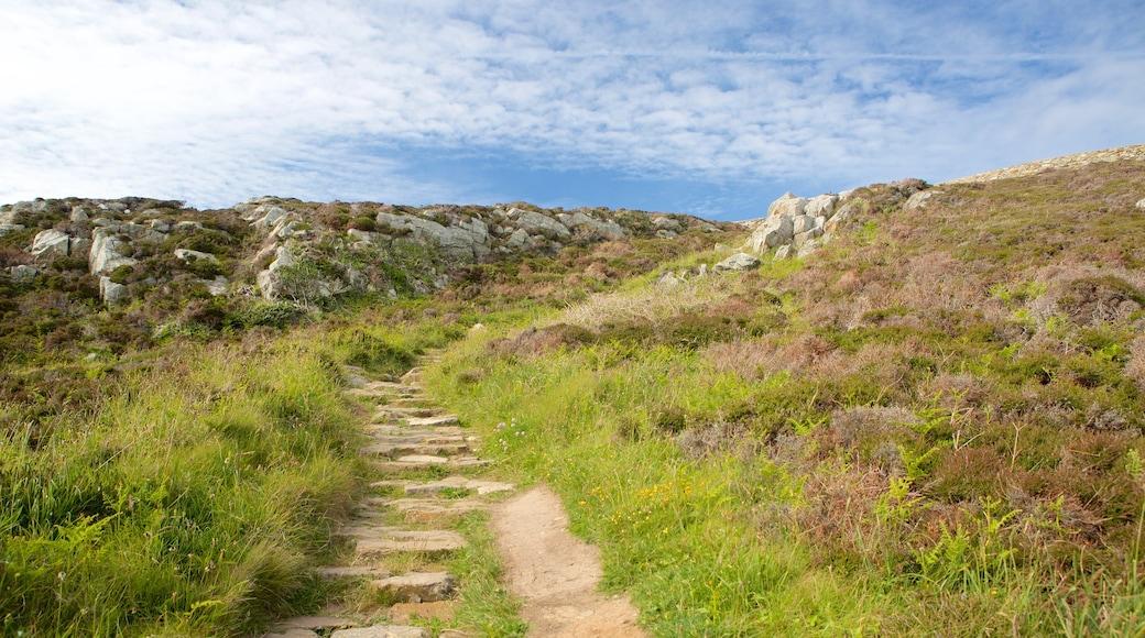 Isle of Anglesey welches beinhaltet Farmland