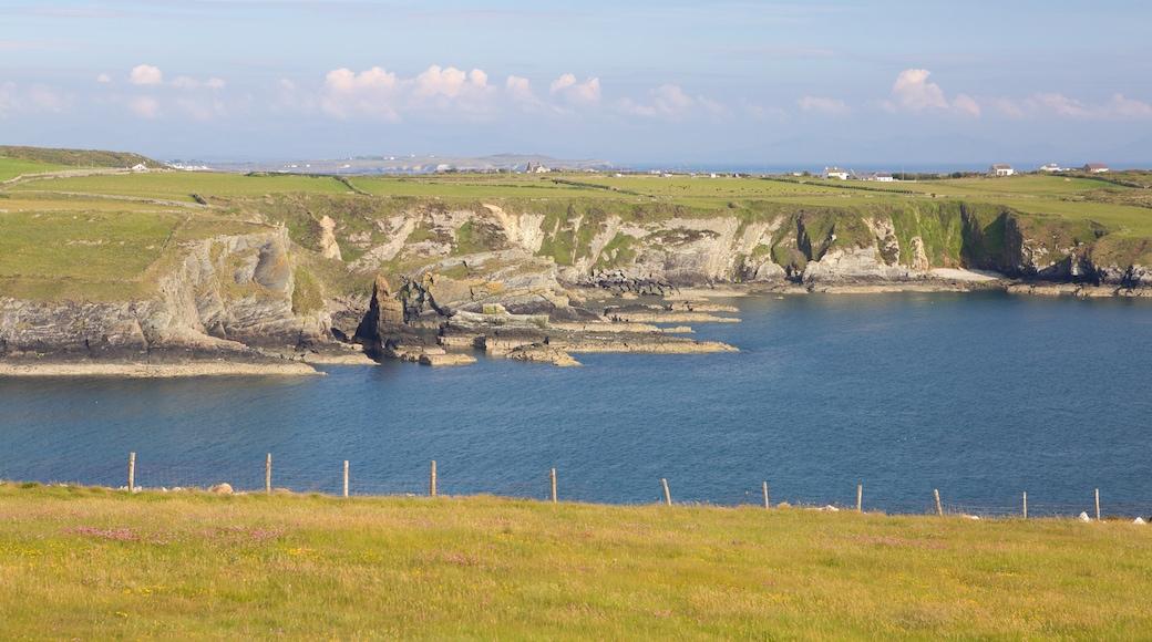 Isle of Anglesey das einen allgemeine Küstenansicht und Farmland