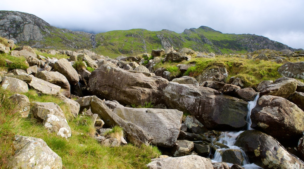 Snowdonia National Park showing tranquil scenes