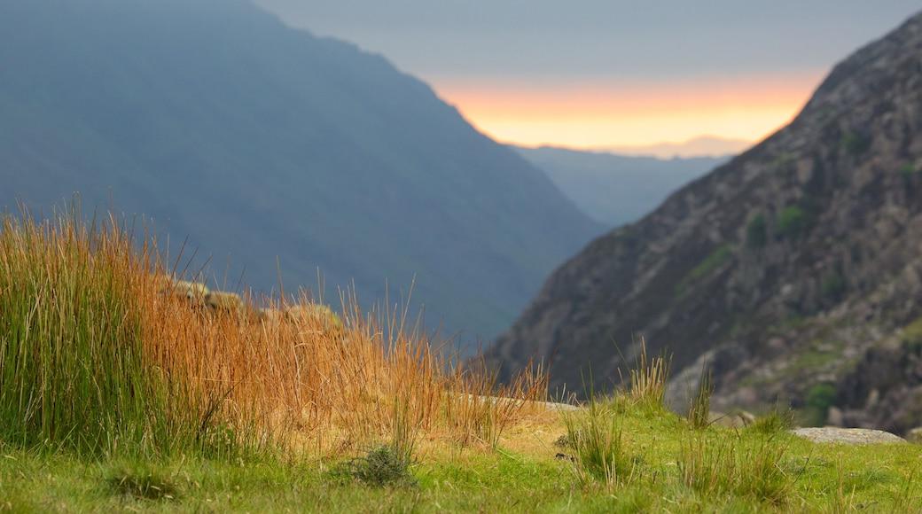 Snowdonia National Park welches beinhaltet ruhige Szenerie
