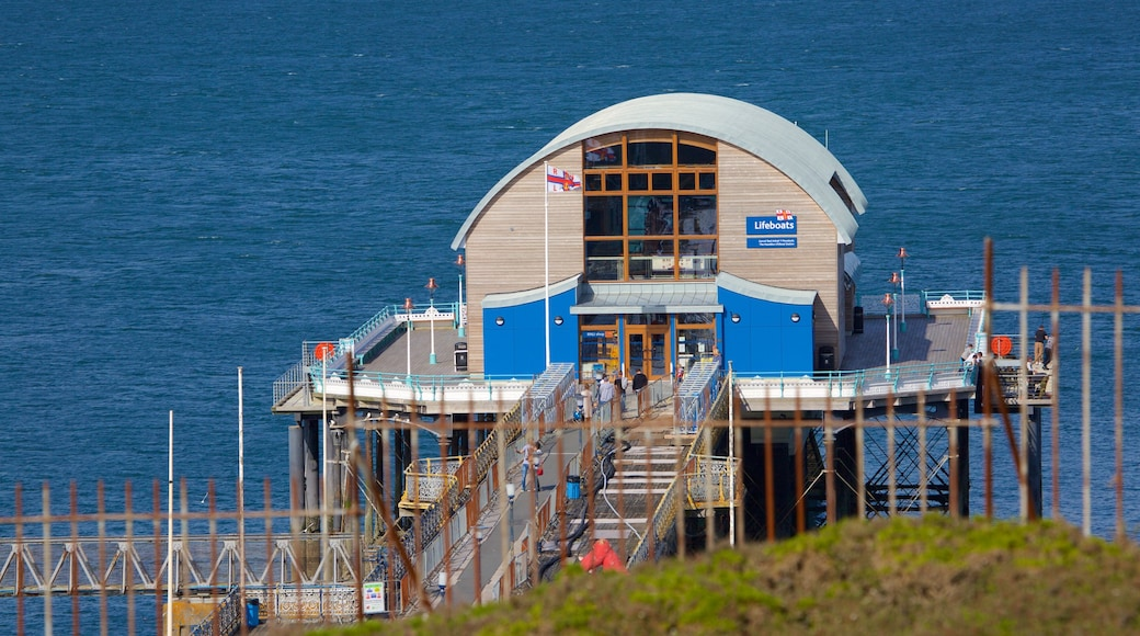Mumbles Pier which includes general coastal views