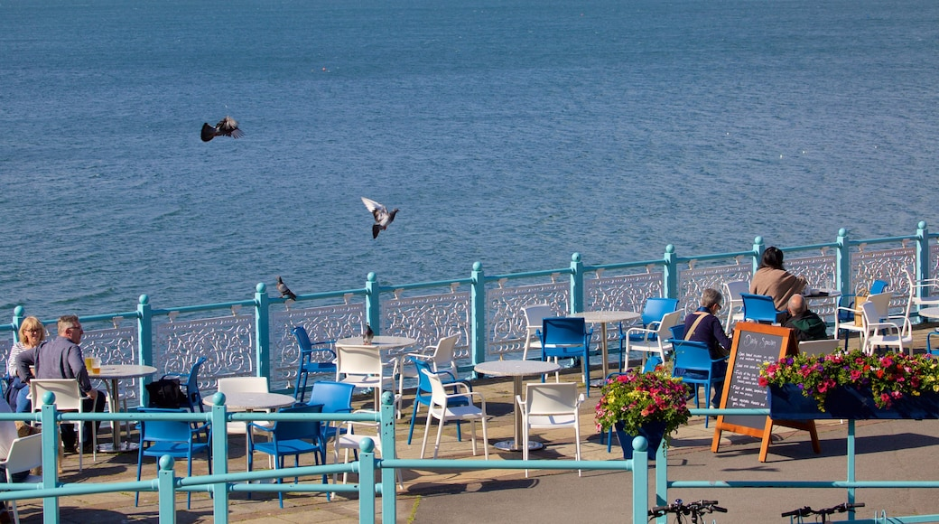 Mumbles Pier featuring café scenes, outdoor eating and general coastal views
