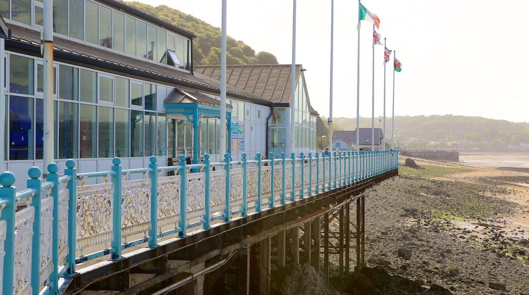 Mumbles Pier which includes a house, a sandy beach and a pebble beach