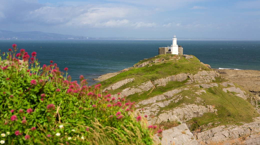 Mumbles Lighthouse showing mountains, a lighthouse and general coastal views
