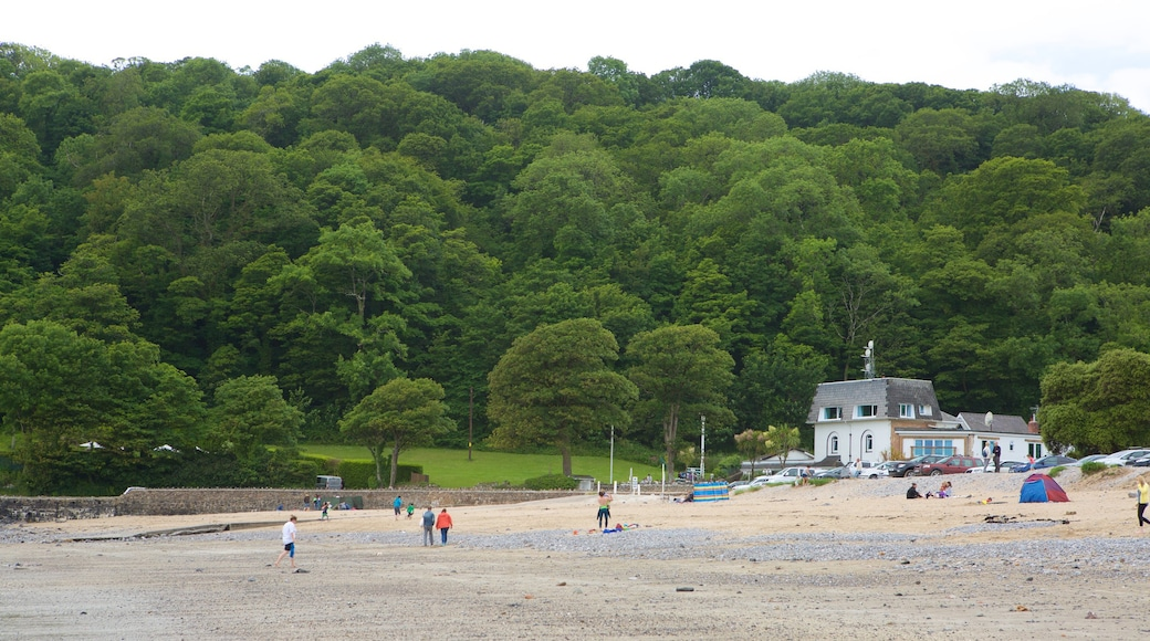 Oxwich Bay Beach showing a beach and forest scenes