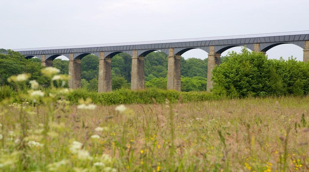 Pontcysyllte Aquaduct which includes a bridge and farmland