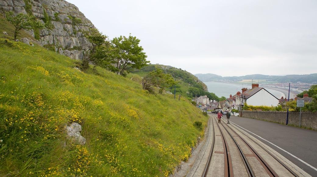 Great Orme Tramway welches beinhaltet Straßenszenen