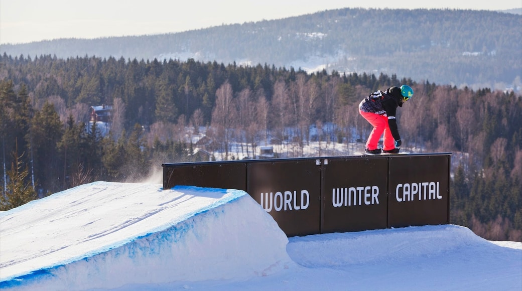 Oslo Winter Park which includes snowboarding and snow as well as an individual female
