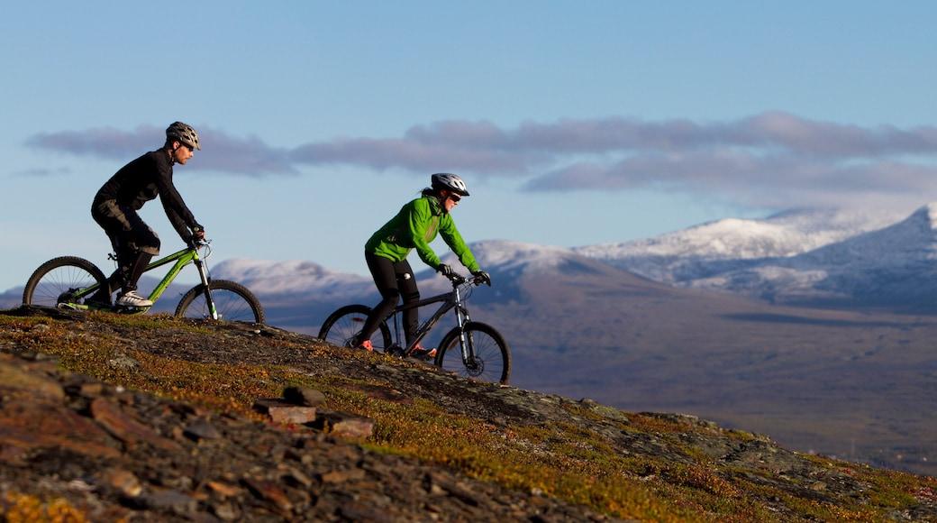Björkliden Fjällby som visar mountainbiking såväl som en liten grupp av människor