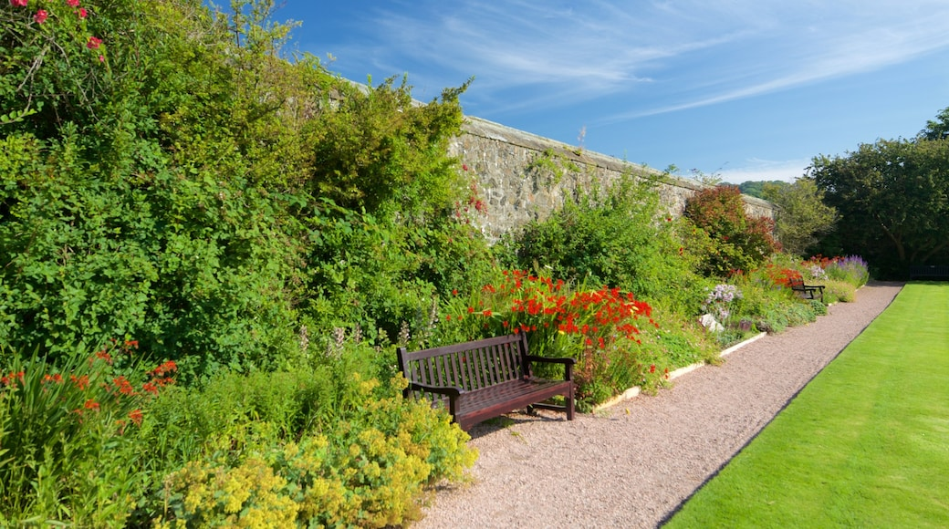 Aberdour Castle featuring a park