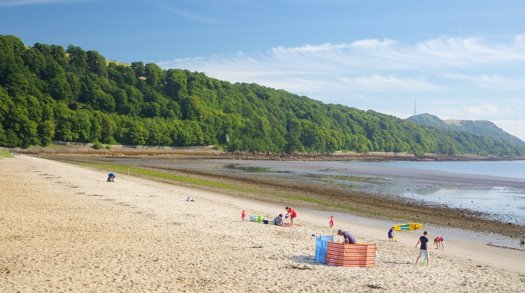 Silver Sands Beach showing a beach