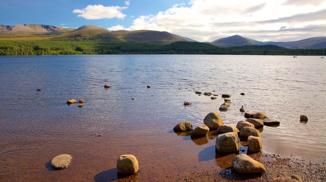 Loch Morlich inclusief een kiezelstrand en een rivier of beek