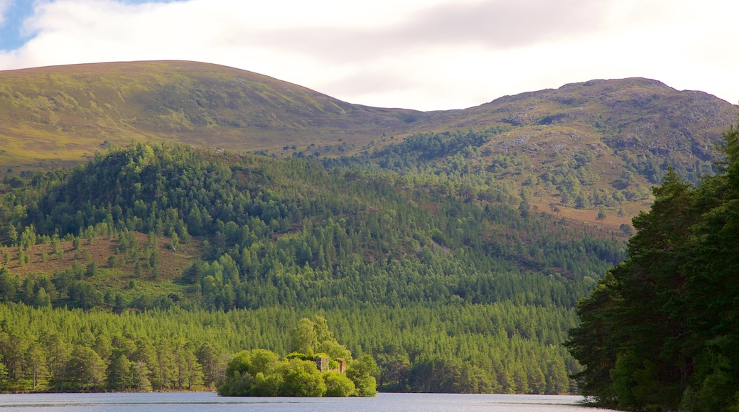Loch an Eilein featuring forest scenes, a lake or waterhole and mountains