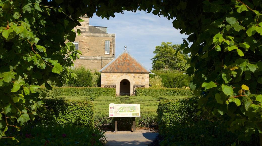 Royal Botanic Garden showing a park
