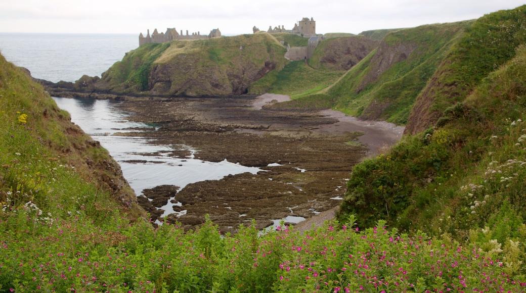 Dunnottar Castle showing general coastal views and farmland