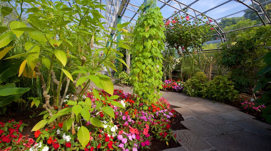 Duthie Park Winter Gardens featuring a park and interior views