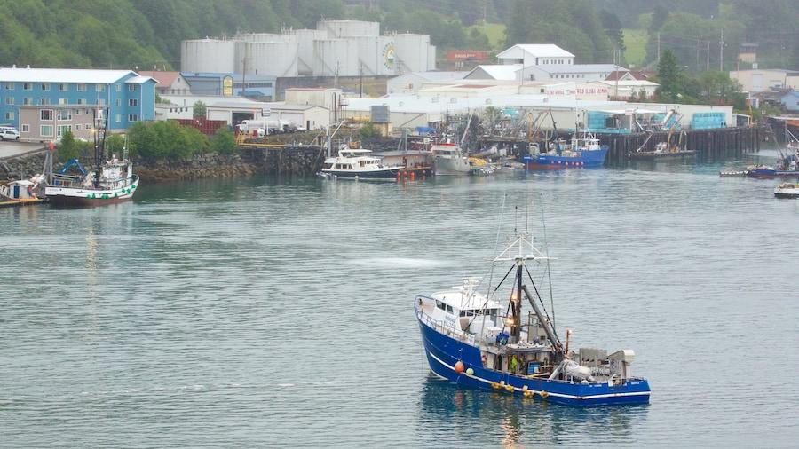Ketchikan mettant en vedette vues littorales et navigation