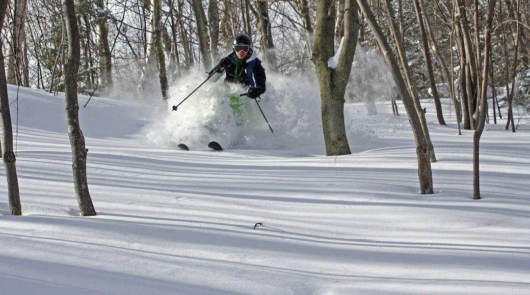 Stowe Mountain Resort which includes snow skiing and snow as well as an individual male