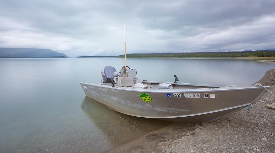 King Salmon qui includes lac ou étang