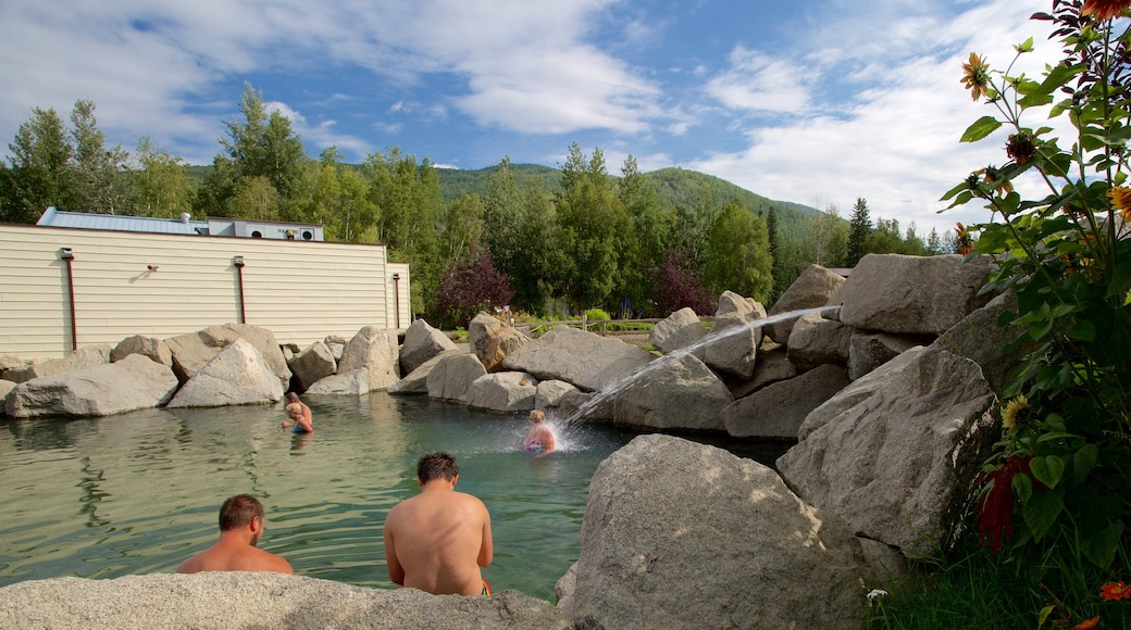 Chena Hot Springs showing a pool and a park as well as a small group of people