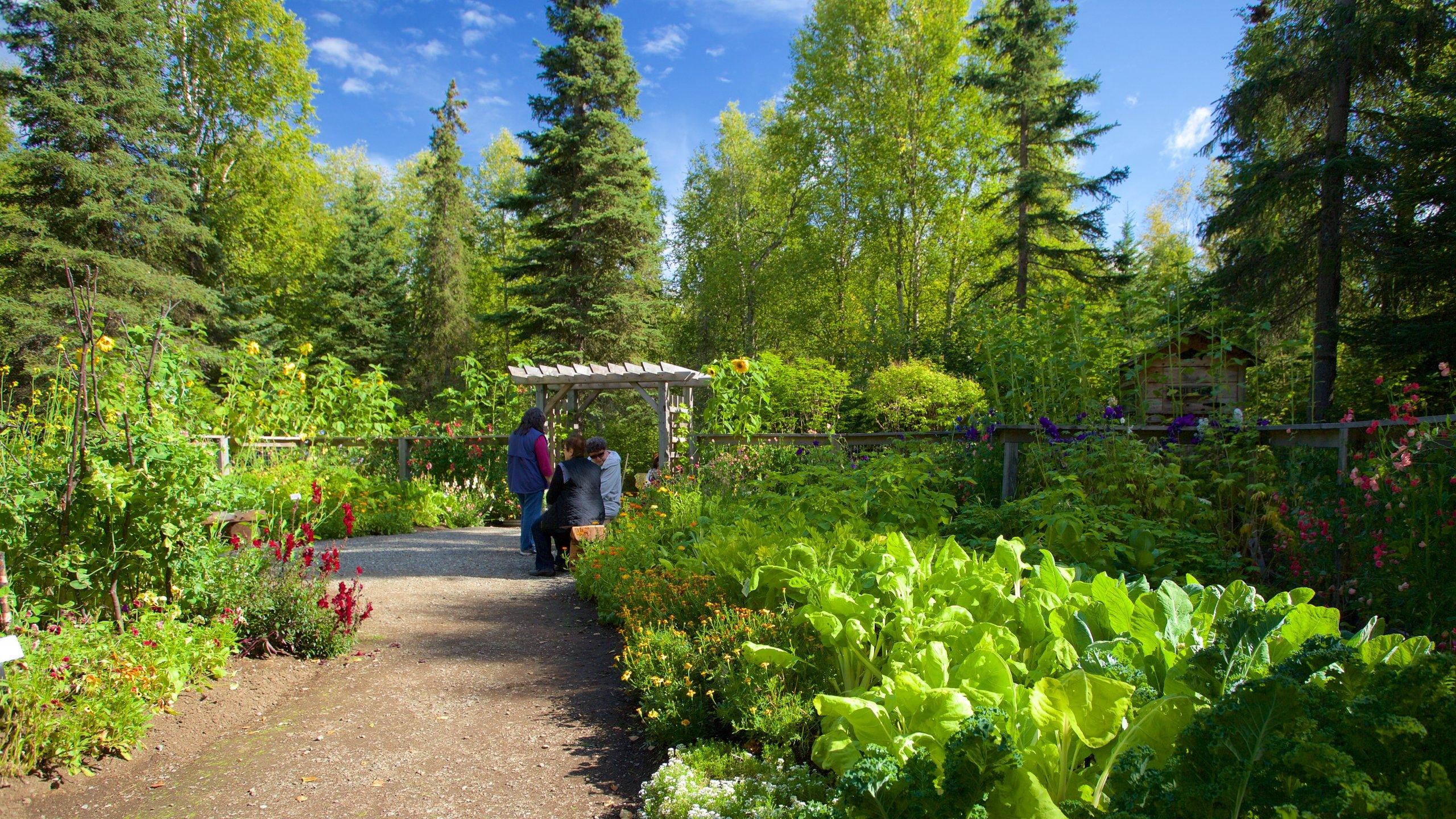 Alaska Botanical Garden, Anchorage, Alaska, United States of America