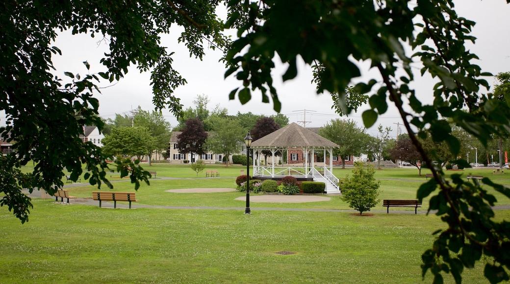 Burlington showing a park