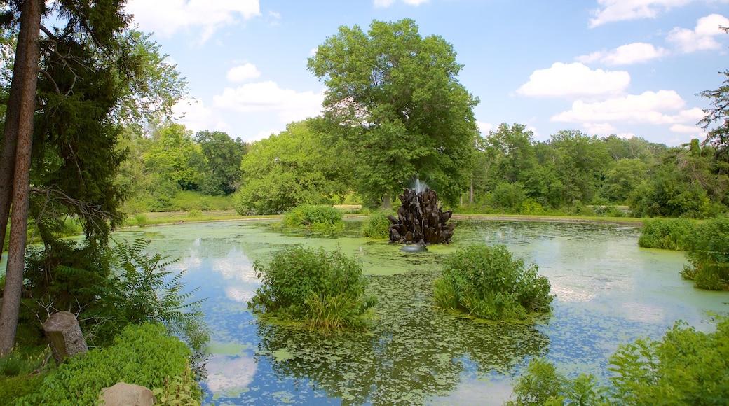 Duke Gardens mettant en vedette parc et mare