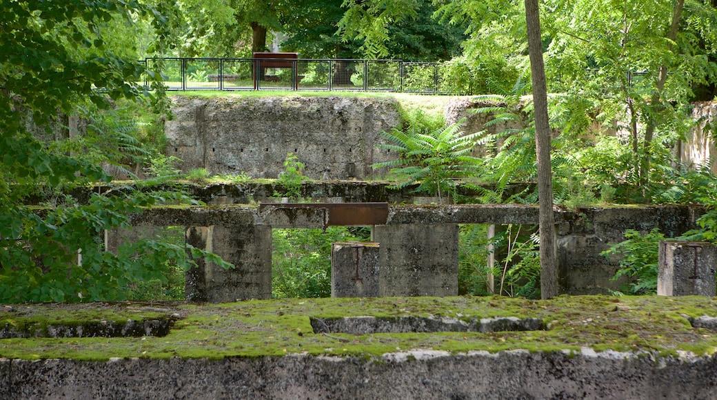 Duke Gardens montrant parc