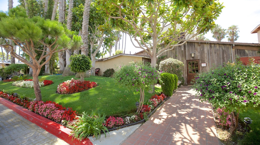 Marina del Rey showing a house and flowers