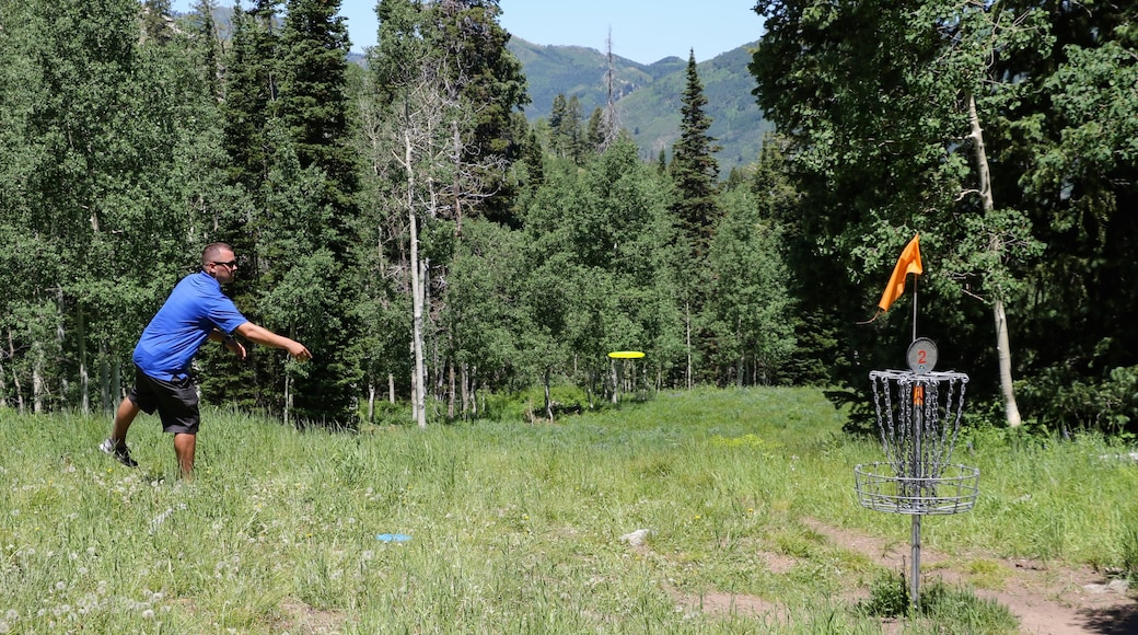 Solitude Mountain showing golf and forests