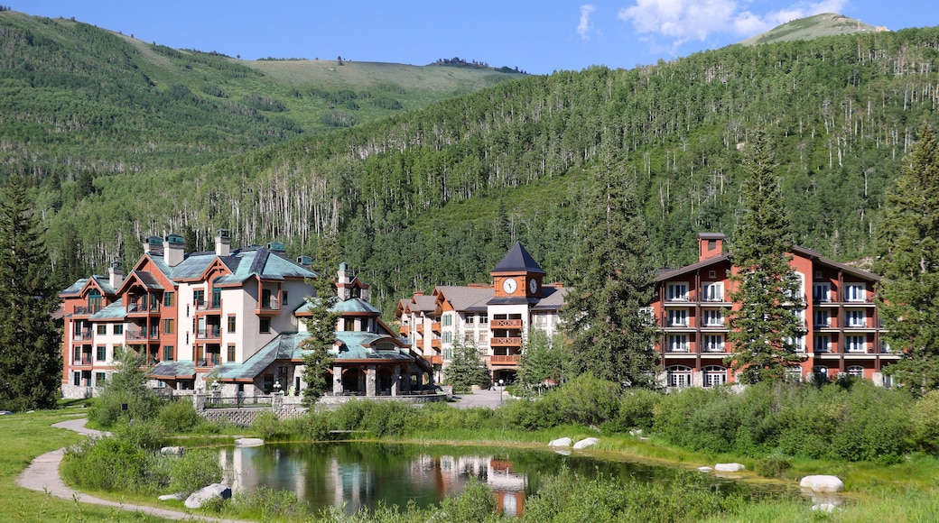 Solitude Mountain which includes a small town or village, forests and a pond