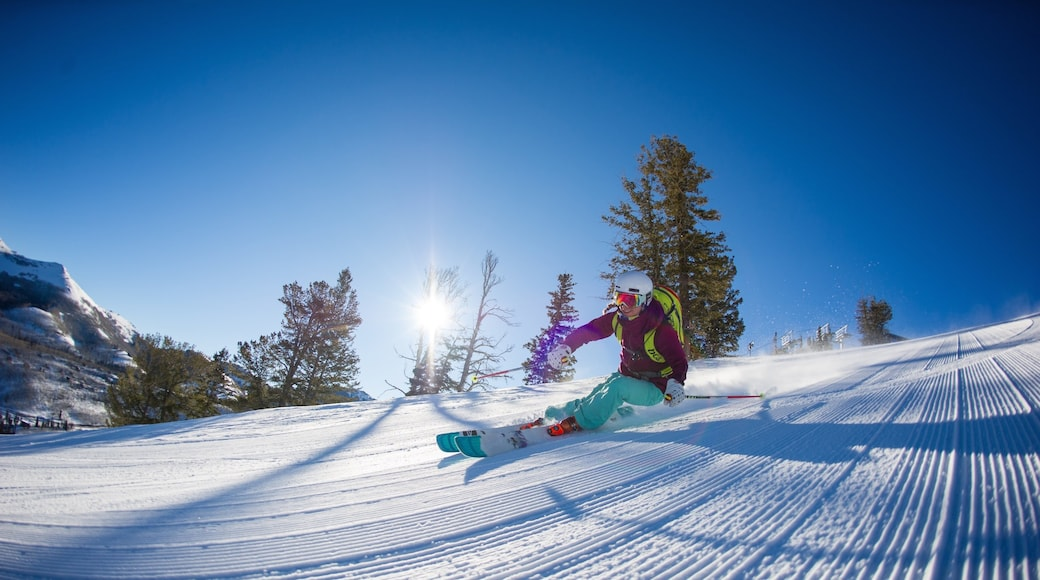 Solitude Mountain featuring snow skiing and snow