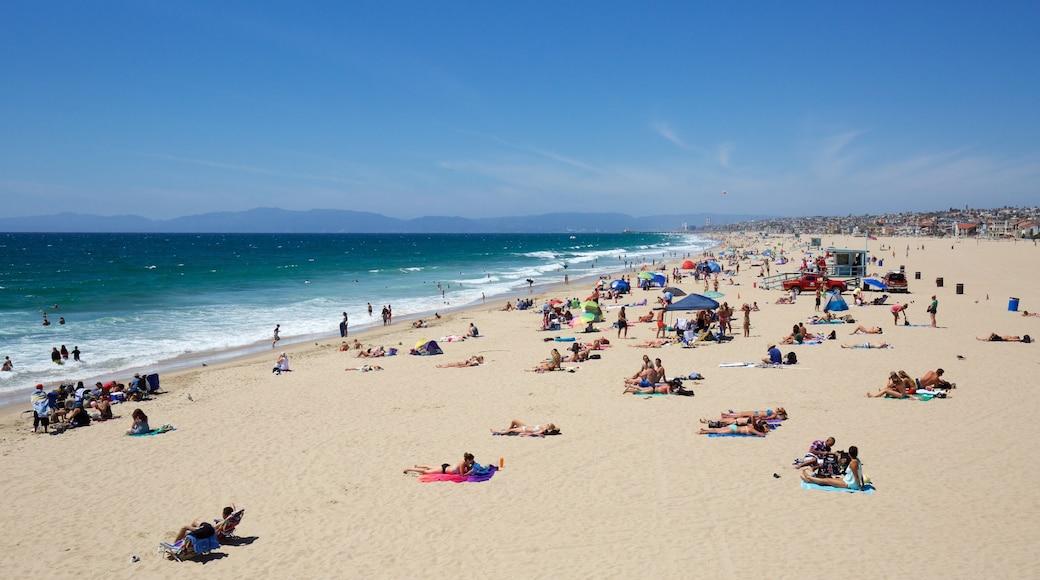 Hermosa Beach das einen allgemeine Küstenansicht und Sandstrand sowie große Menschengruppe