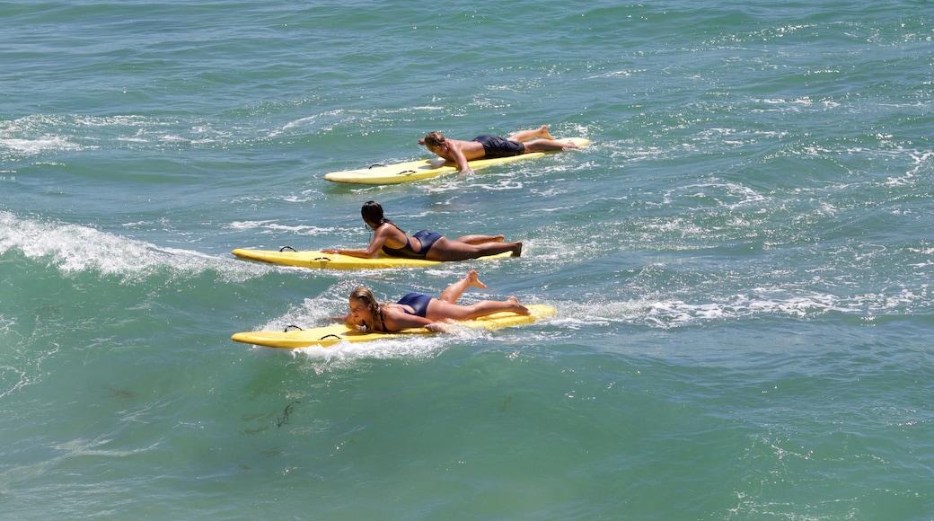 Hermosa Beach welches beinhaltet Sandstrand und Surfen sowie kleine Menschengruppe