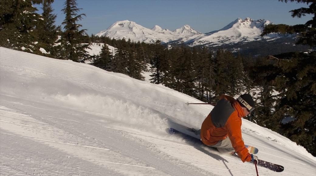 Mt. Bachelor Ski Resort showing snow skiing and snow