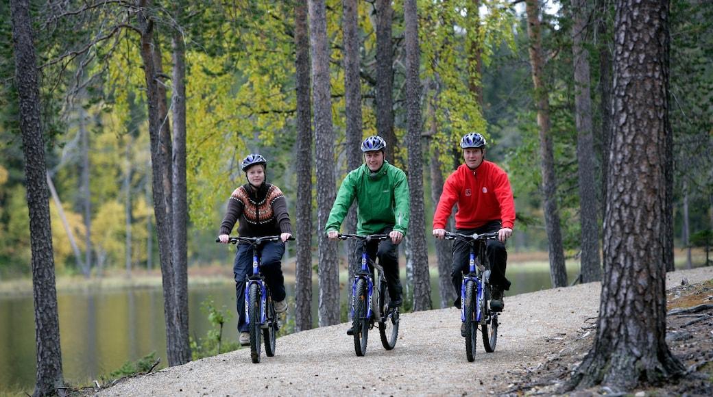 Luosto featuring metsänäkymät ja maantiepyöräily sekä pieni ryhmä ihmisiä