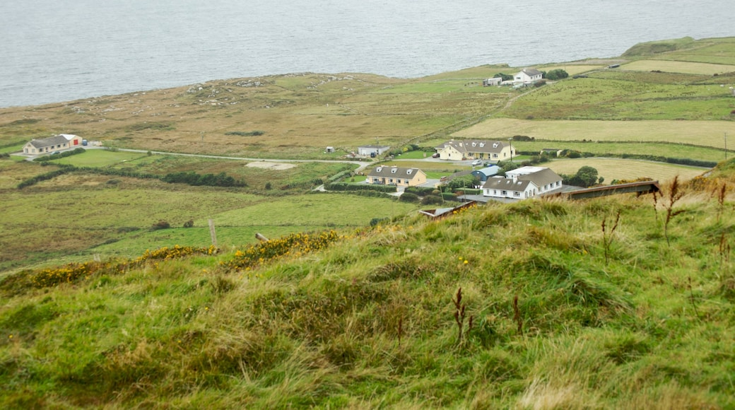 Clifden showing a house and tranquil scenes