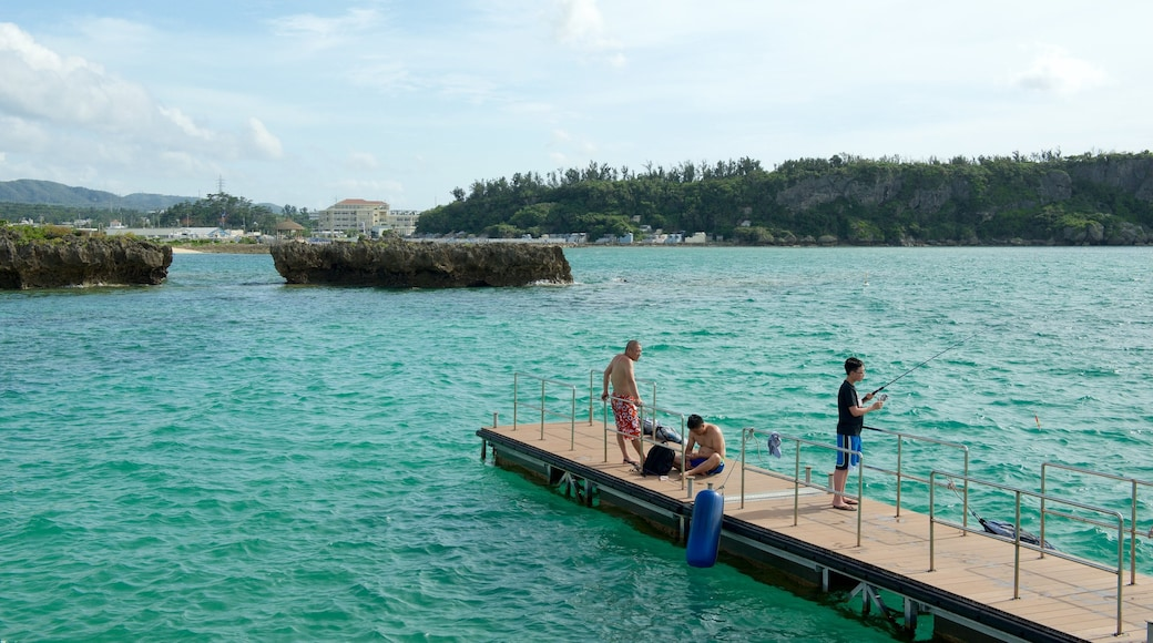Okinawa showing general coastal views and fishing